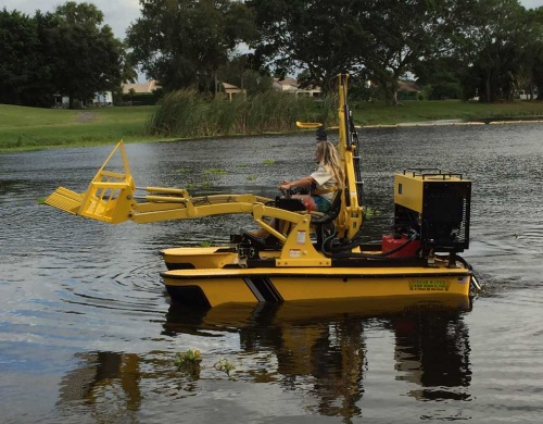 best-weed-control-lakes-usa