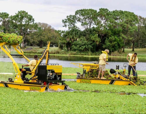 weed-control-ponds-lakes-